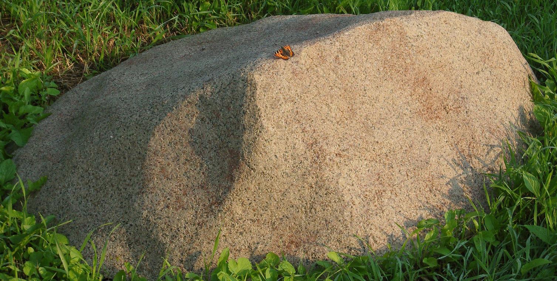 Декоративная крышка люка под камень «Стандарт» D-100